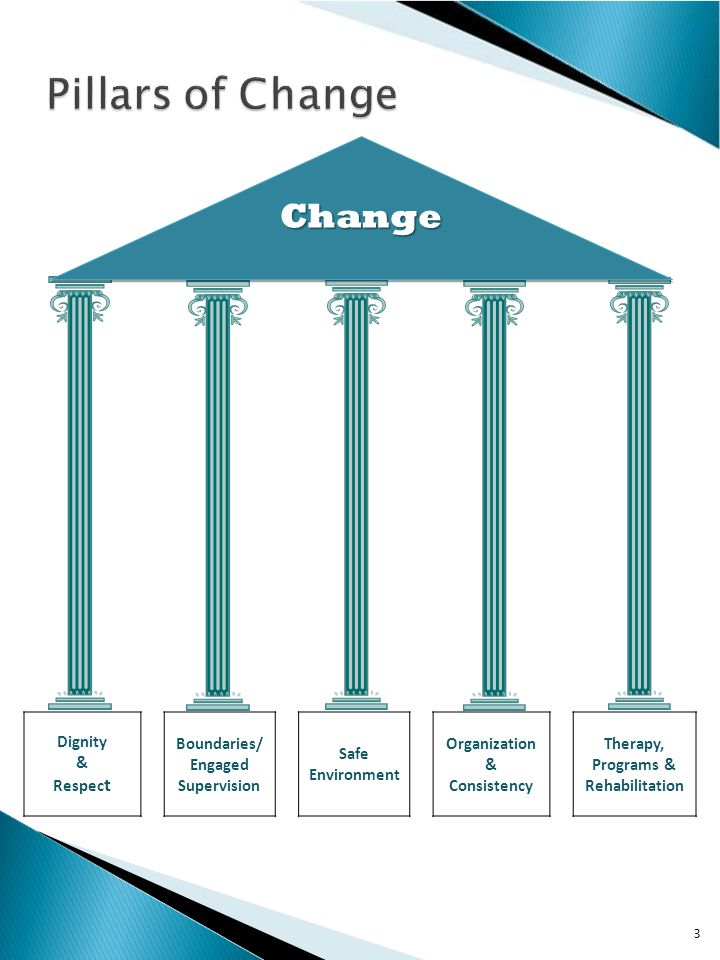  1.Dignity and Respect  2.Boundaries and Engaged Supervision  3.Safe Environment  4.Organization and Consistency  5.Therapy, Program and Rehabilitation 4