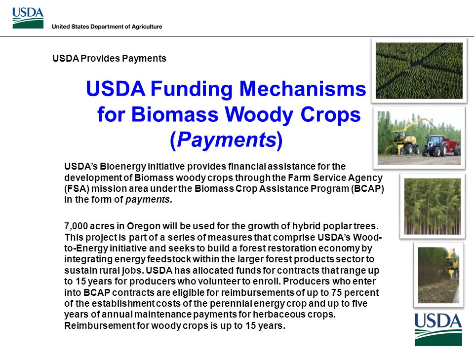 USDA Funding Mechanisms for Biomass Woody Crops (Payments) USDA's Bioenergy initiative provides financial assistance for the development of Biomass woody crops through the Farm Service Agency (FSA) mission area under the Biomass Crop Assistance Program (BCAP) in the form of payments.