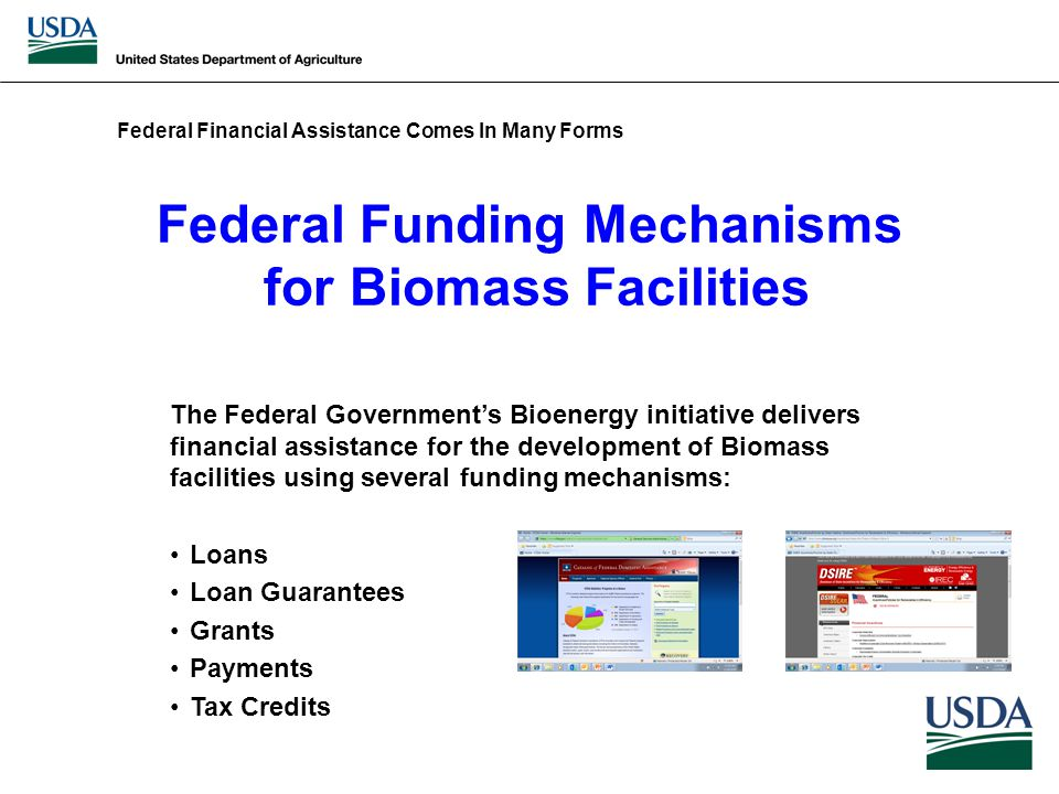 Federal Funding Mechanisms for Biomass Facilities The Federal Government's Bioenergy initiative delivers financial assistance for the development of Biomass facilities using several funding mechanisms: Loans Loan Guarantees Grants Payments Tax Credits Federal Financial Assistance Comes In Many Forms