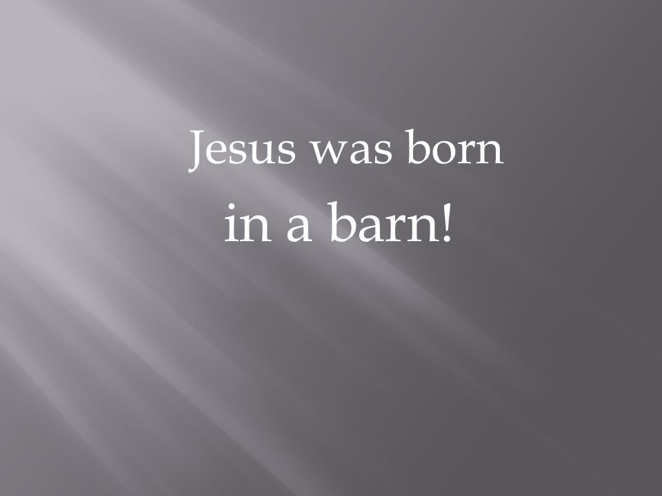 Jesus was born in a barn!