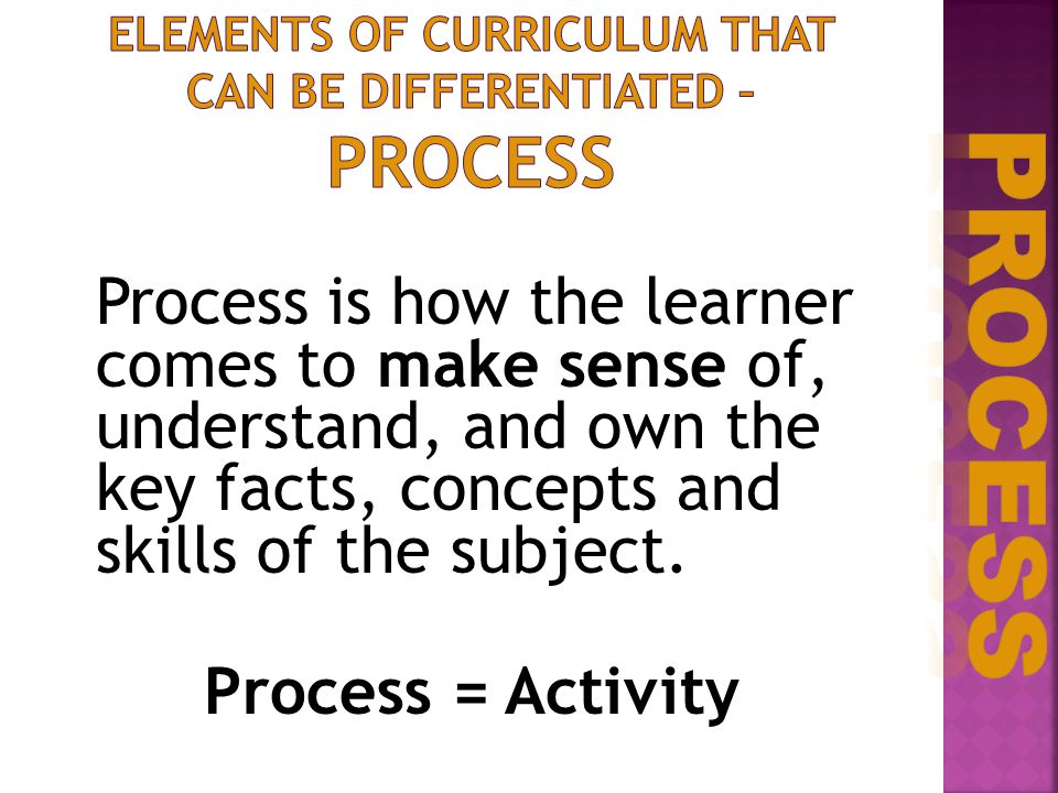 Process is how the learner comes to make sense of, understand, and own the key facts, concepts and skills of the subject. Process = Activity
