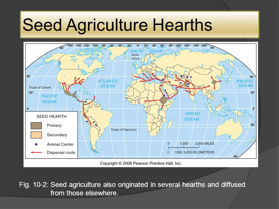 Seed Agriculture Hearths Fig.