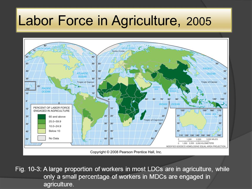Labor Force in Agriculture, 2005 Fig.