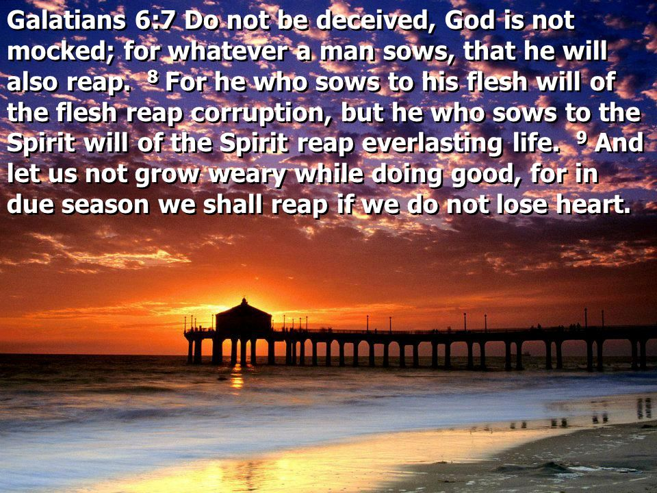 Galatians 6:7 Do not be deceived, God is not mocked; for whatever a man sows, that he will also reap. 8 For he who sows to his flesh will of the flesh