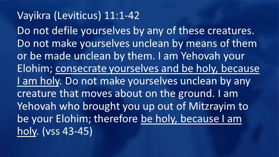 Vayikra (Leviticus) 11:1-42 Do not defile yourselves by any of these creatures.