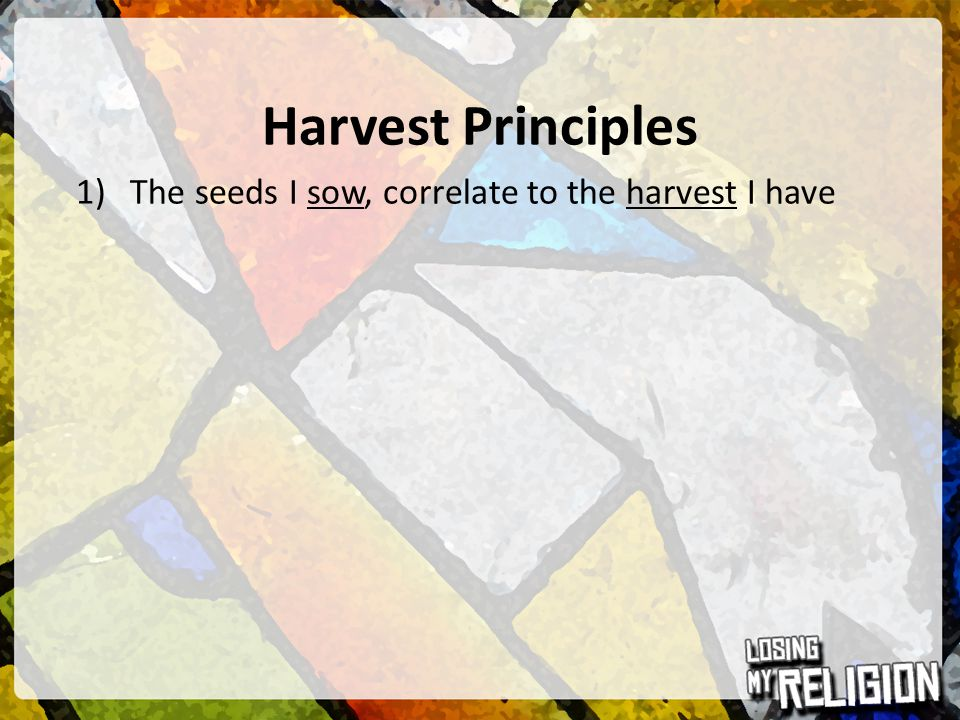 Harvest Principles 1)The seeds I sow, correlate to the harvest I have