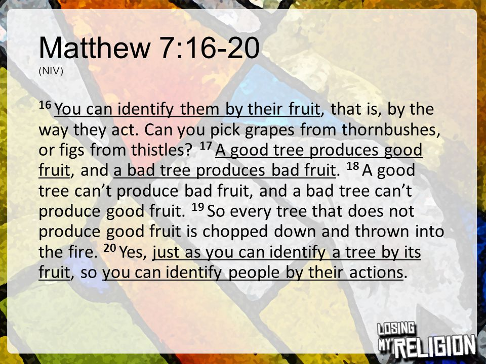 Matthew 7:16-20 (NIV) 16 You can identify them by their fruit, that is, by the way they act. Can you pick grapes from thornbushes, or figs from thistl
