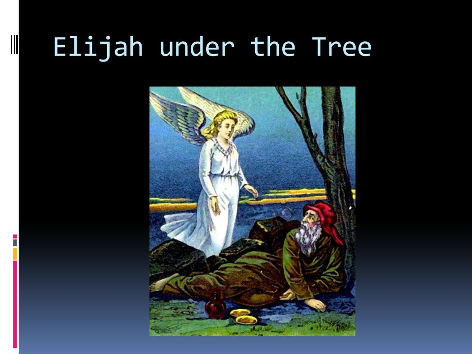Elijah's Discouragement  I Kings 19:4  4 But he himself went a day s journey into the wilderness, and came and sat down under a juniper tree: and he requested for himself that he might die; and said, It is enough; now, O LORD, take away my life; for I am not better than my fathers.