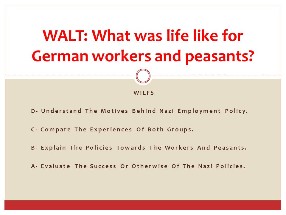 WILFS D- Understand The Motives Behind Nazi Employment Policy.