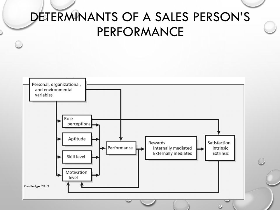 DETERMINANTS OF A SALES PERSON'S PERFORMANCE Routledge 2013