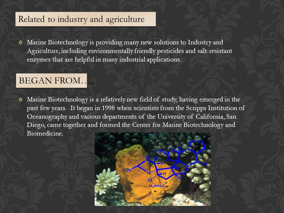 Marine Biotechnology is providing many new solutions to Industry and Agriculture, including environmentally friendly pesticides and salt-resistant enzymes that are helpful in many industrial applications.