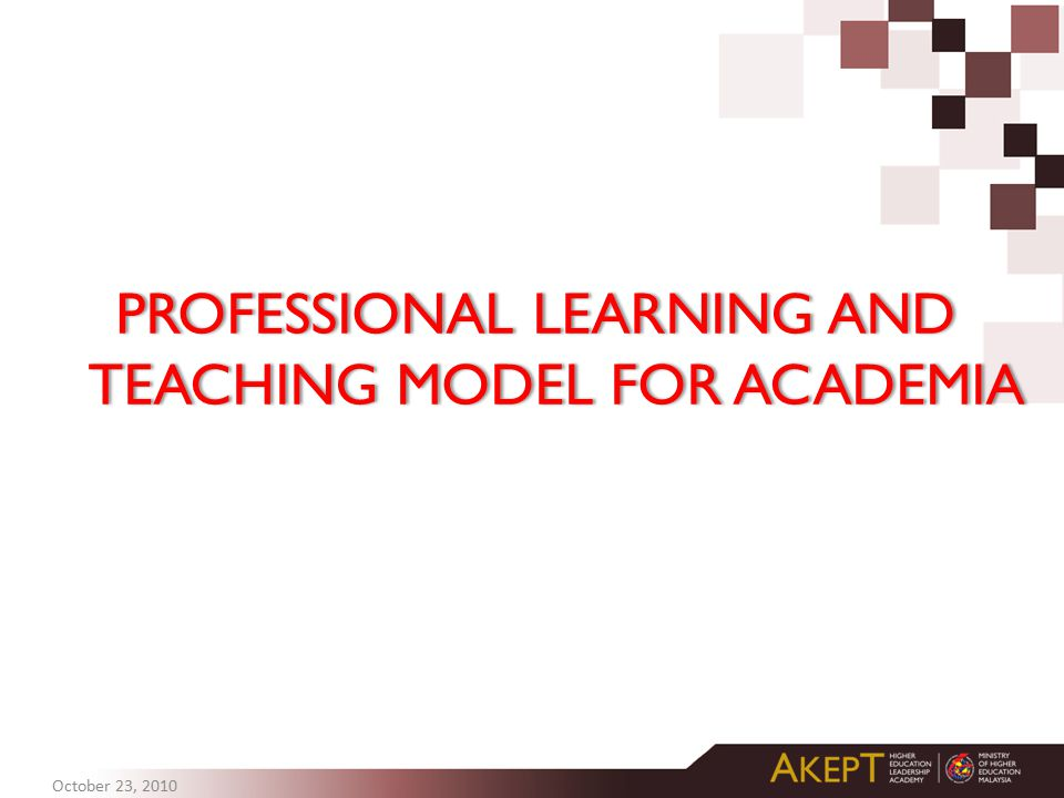 PROFESSIONAL LEARNING AND TEACHING MODEL FOR ACADEMIA October 23, 2010