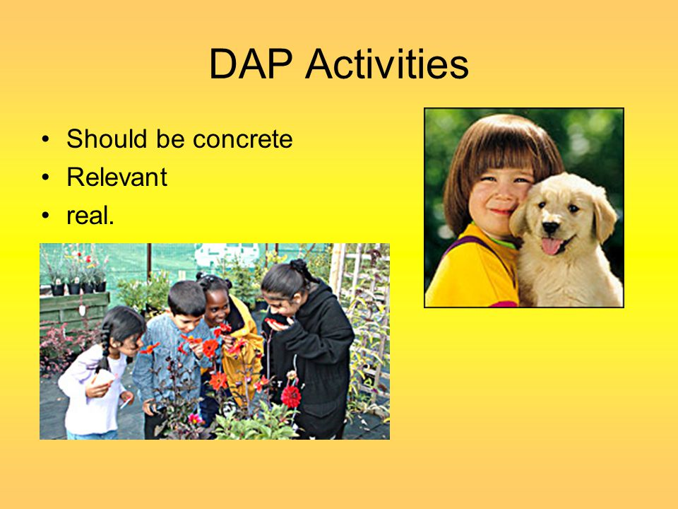 DAP Activities cont'd Programs provide for the needs of unusual skills and interests –Projects