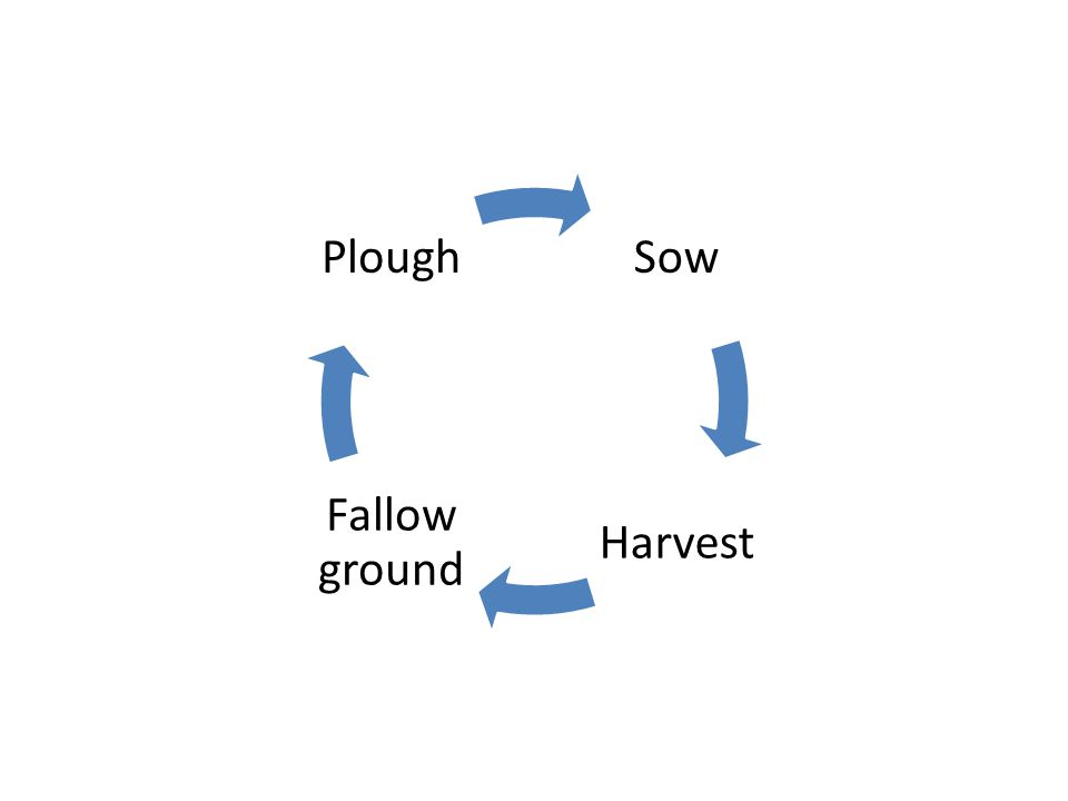 Sow Harvest Fallow ground Plough