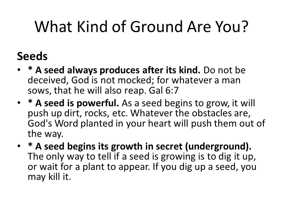 What Kind of Ground Are You. Seeds * A seed always produces after its kind.
