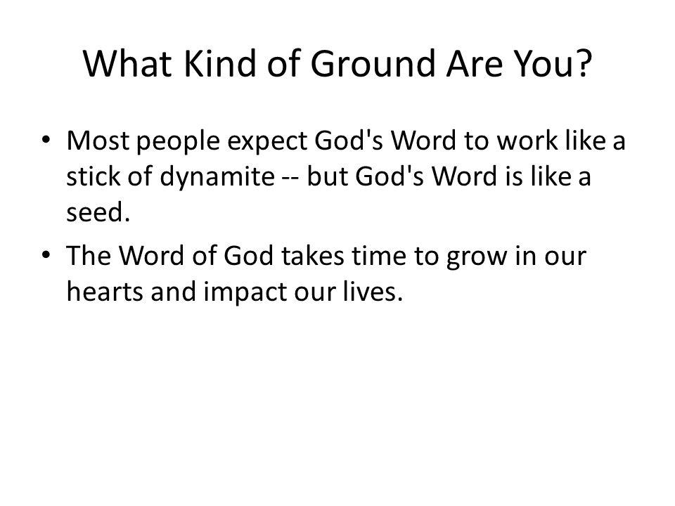 What Kind of Ground Are You.