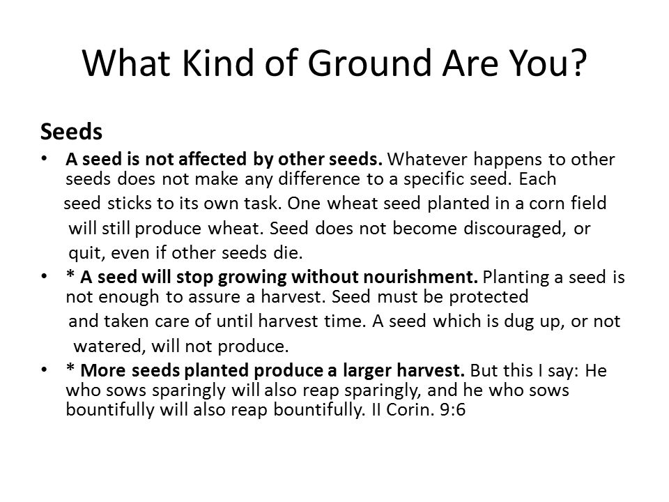 What Kind of Ground Are You. Seeds A seed is not affected by other seeds.