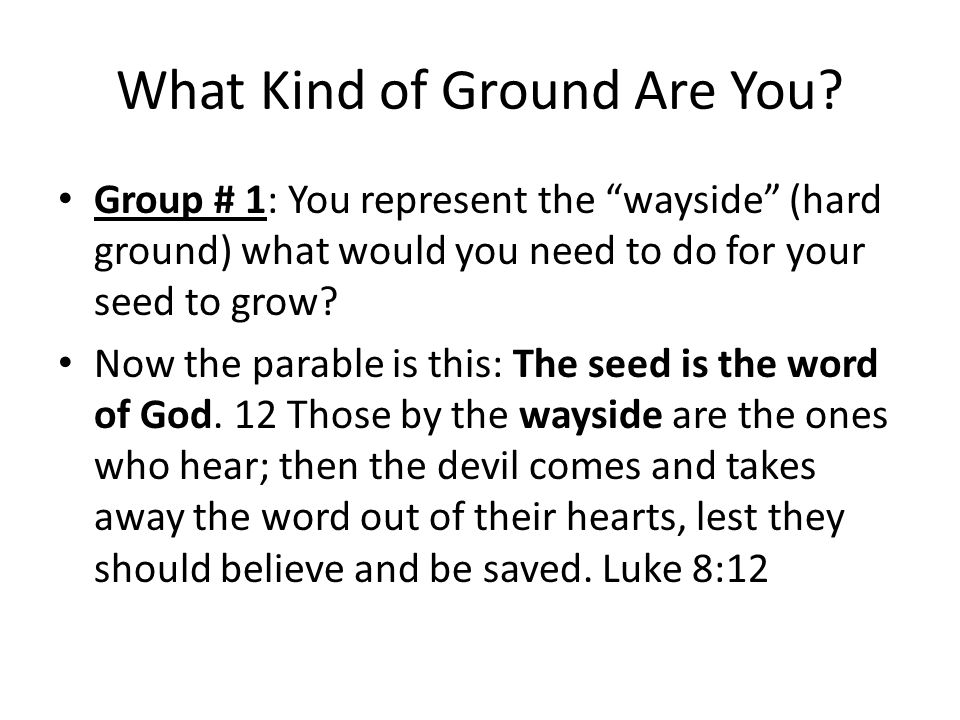 What Kind of Ground Are You.Group # 2: You represent rocky ground.