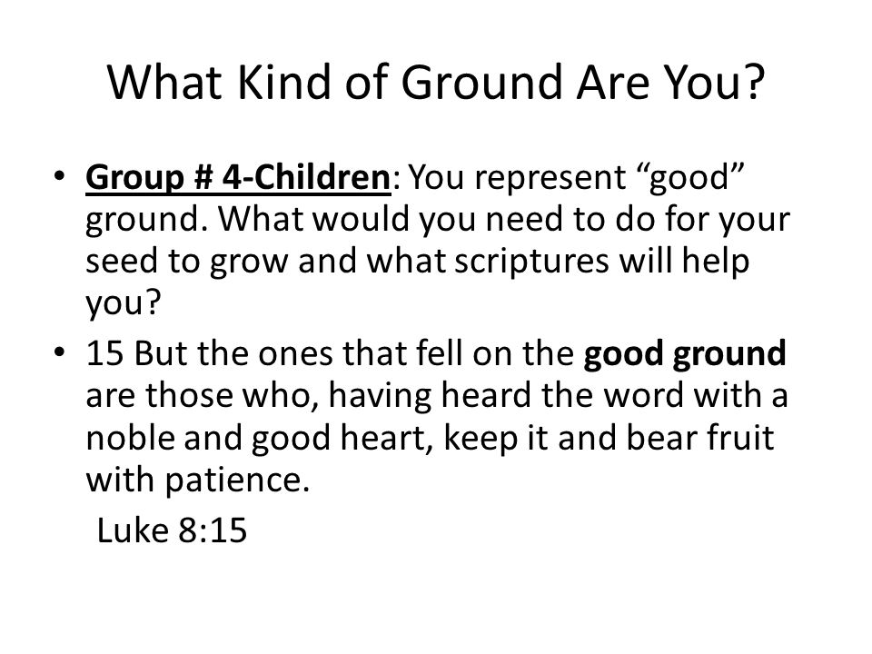 What Kind of Ground Are You.Seeds A seed takes time to produce.