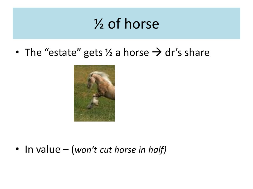 ½ of horse The estate gets ½ a horse  dr's share In value – ( won't cut horse in half)