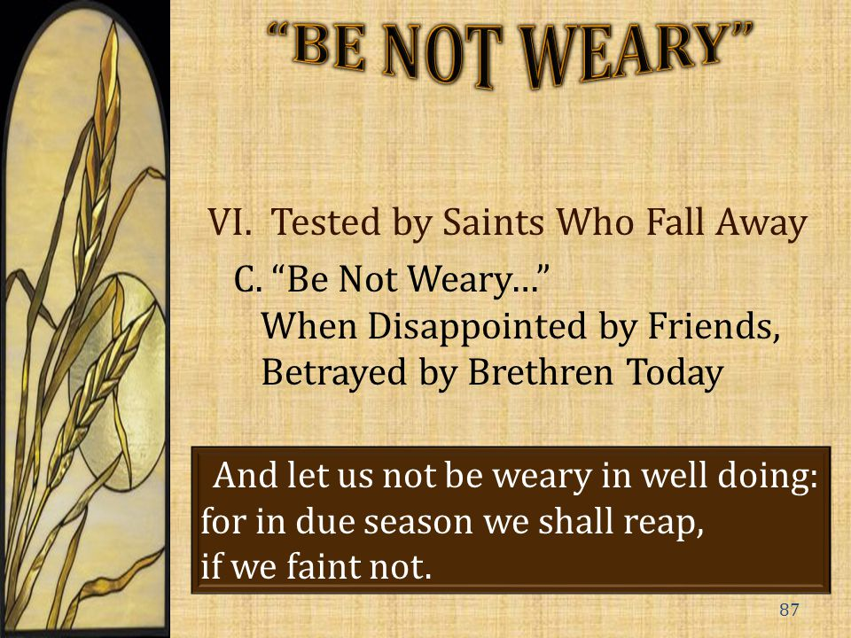 VI. Tested by Saints Who Fall Away C.