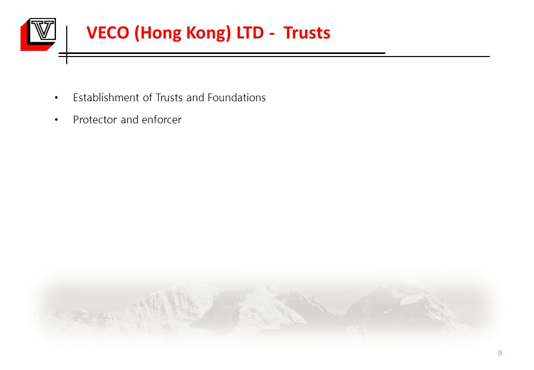 VECO (Hong Kong) LTD - Trusts Establishment of Trusts and Foundations Protector and enforcer 9