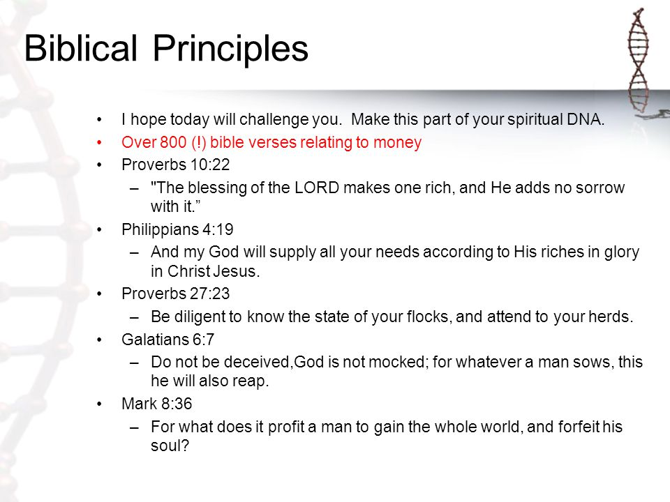 Biblical Principles I hope today will challenge you.