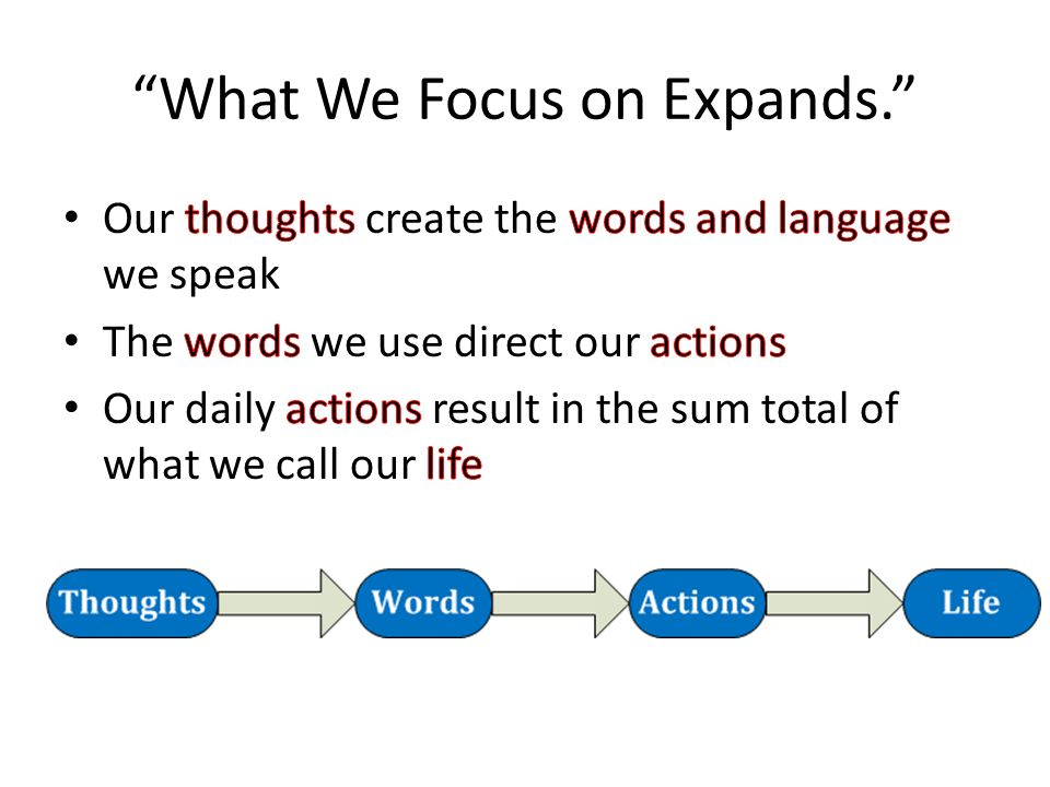What We Focus on Expands.