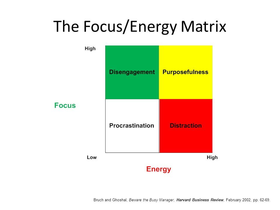 The Focus/Energy Matrix Bruch and Ghoshal, Beware the Busy Manager, Harvard Business Review, February 2002, pp. 62-69.