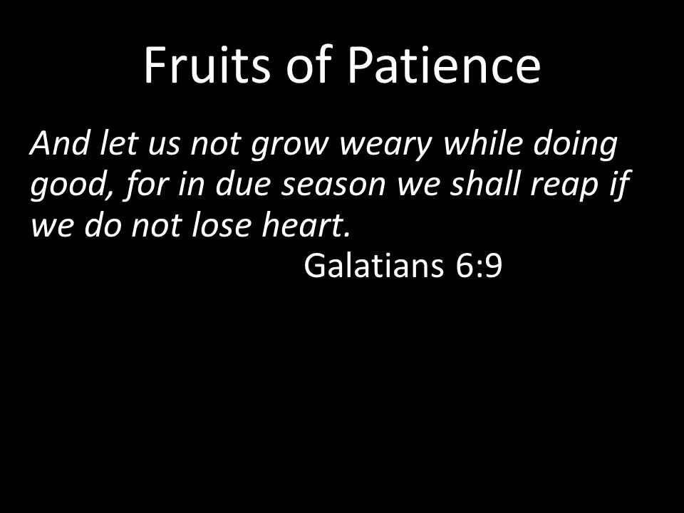 Fruits of Patience And let us not grow weary while doing good, for in due season we shall reap if we do not lose heart. Galatians 6:9