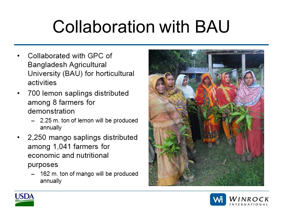 Collaboration with BAU Collaborated with GPC of Bangladesh Agricultural University (BAU) for horticultural activities 700 lemon saplings distributed among 8 farmers for demonstration –2.25 m.