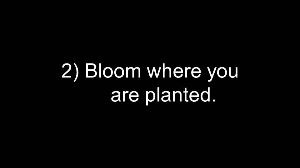 2) Bloom where you are planted.