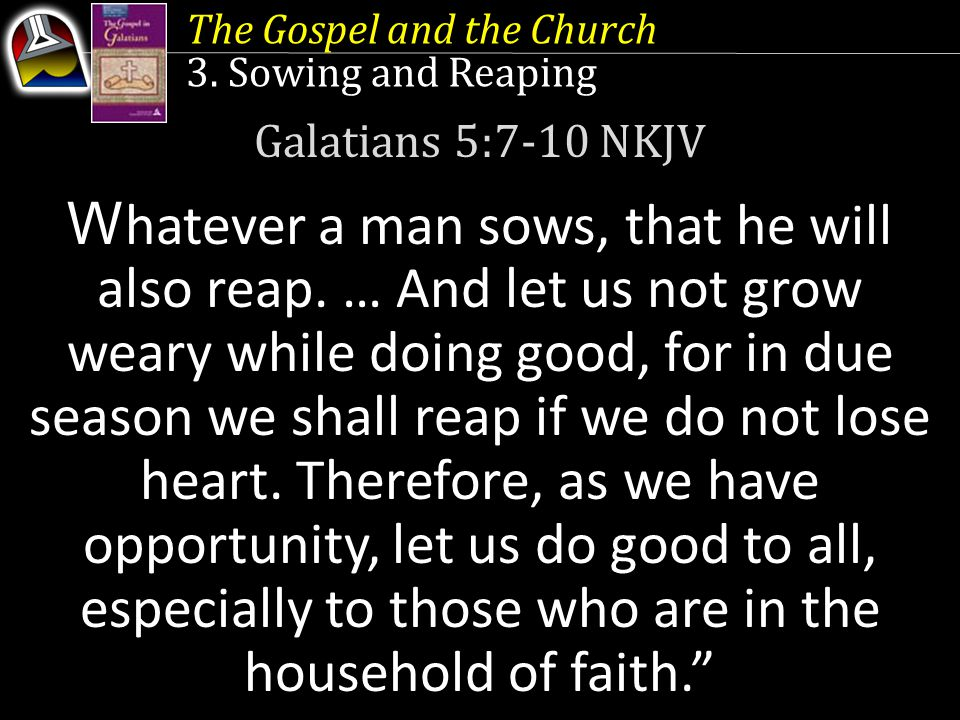 The Gospel and the Church 3. Sowing and Reaping Galatians 5:7-10 NKJV W hatever a man sows, that he will also reap. … And let us not grow weary while