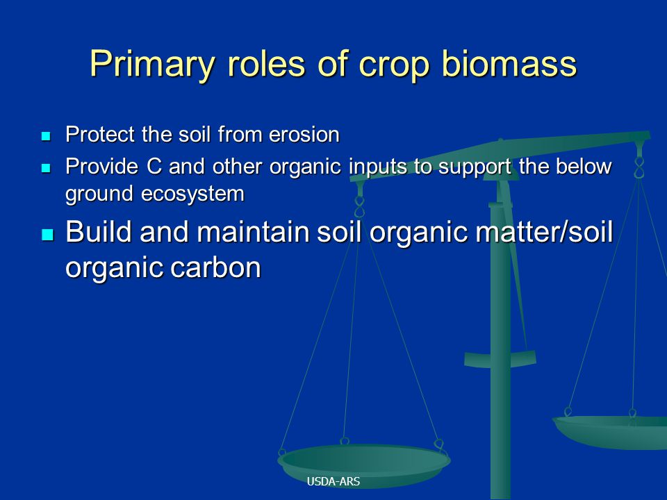 Primary roles of crop biomass Protect the soil from erosion Protect the soil from erosion Provide C and other organic inputs to support the below ground ecosystem Provide C and other organic inputs to support the below ground ecosystem Build and maintain soil organic matter/soil organic carbon Build and maintain soil organic matter/soil organic carbon