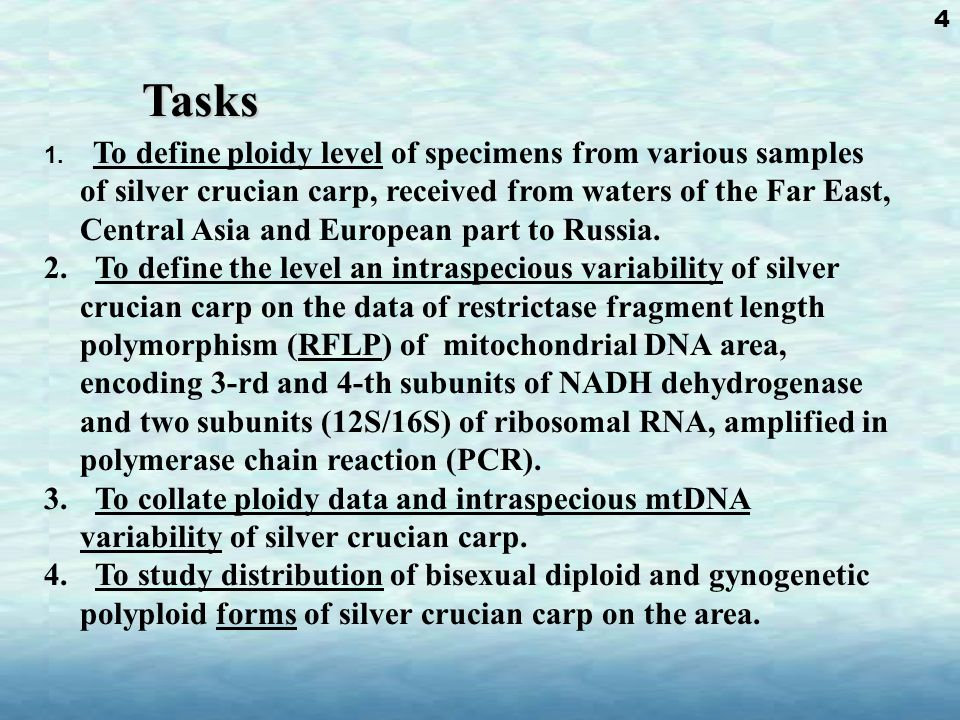 Methods 1.Amplification of mtDNA: ND3/ND4L/ND4, 12S/16S rRNA.