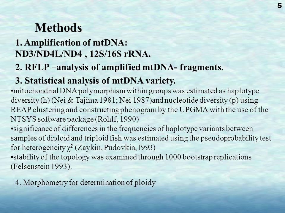 Methods 1. Amplification of mtDNA: ND3/ND4L/ND4, 12S/16S rRNA.