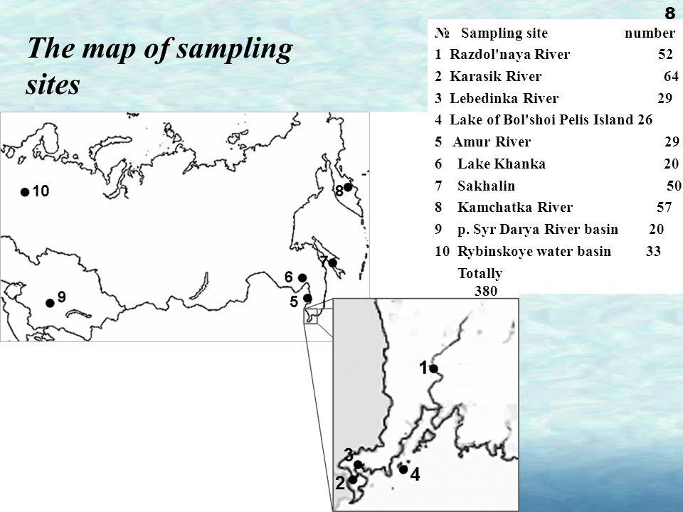 The map of sampling sites № Sampling site number 1 Razdol naya River 52 2 Karasik River 64 3 Lebedinka River 29 4 Lake of Bol shoi Pelis Island 26 5 Amur River 29 6 Lake Khanka 20 7 Sakhalin 50 8 Kamchatka River 57 9 р.