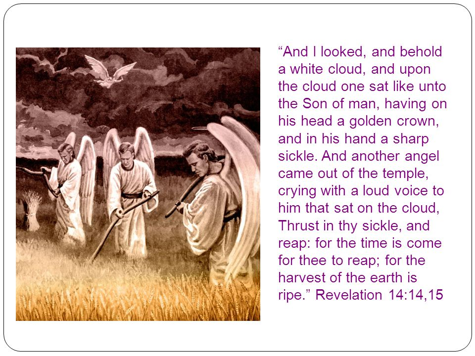 And I looked, and behold a white cloud, and upon the cloud one sat like unto the Son of man, having on his head a golden crown, and in his hand a sharp sickle.