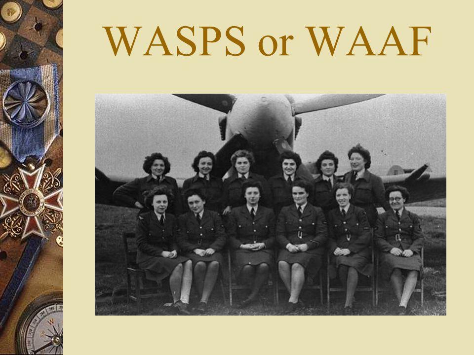 WASPS or WAAF