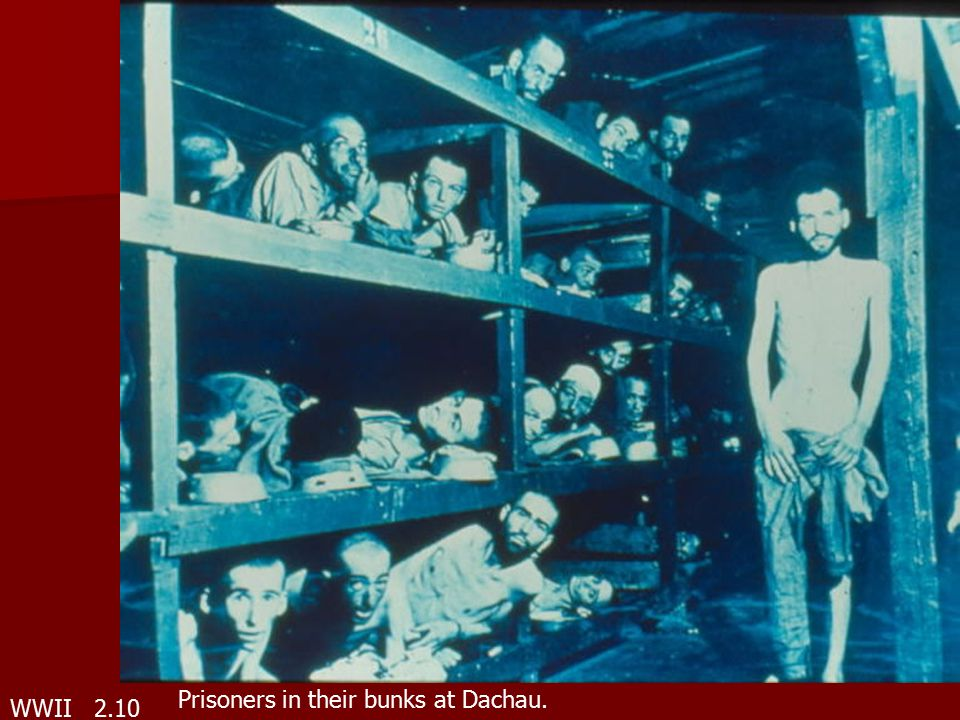 WWII 2.10 Prisoners in their bunks at Dachau.