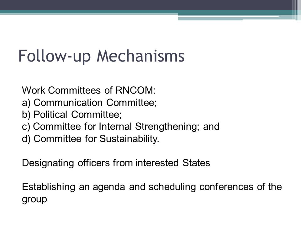 Follow-up Mechanisms Work Committees of RNCOM: a) Communication Committee; b) Political Committee; c) Committee for Internal Strengthening; and d) Com