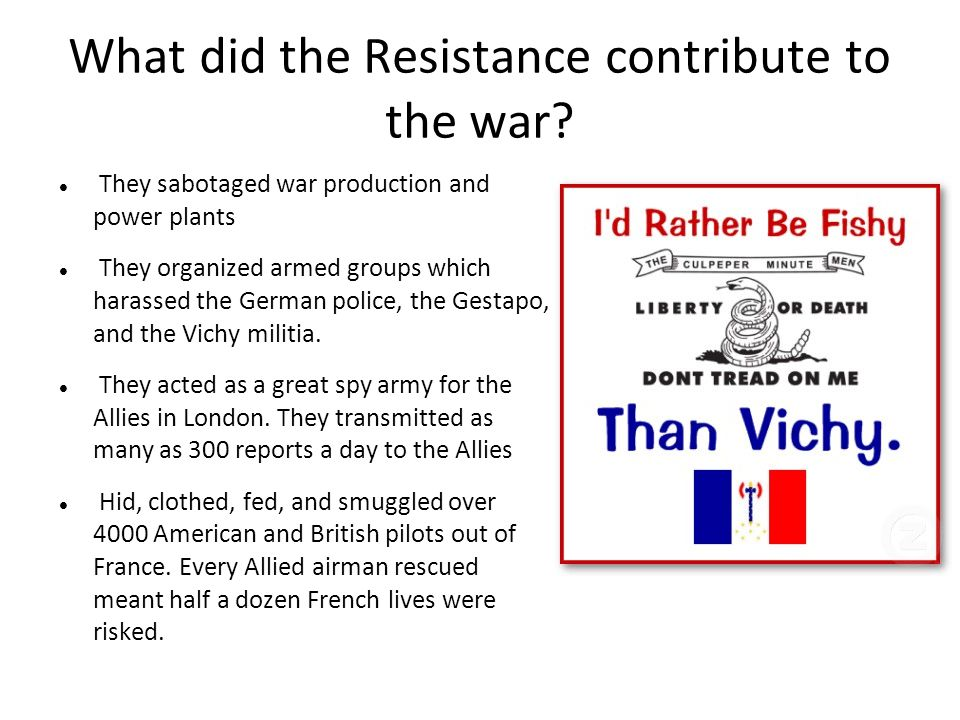 What did the Resistance contribute to the war.