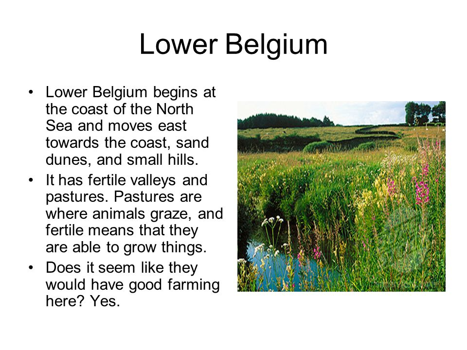 Lower Belgium Lower Belgium begins at the coast of the North Sea and moves east towards the coast, sand dunes, and small hills.