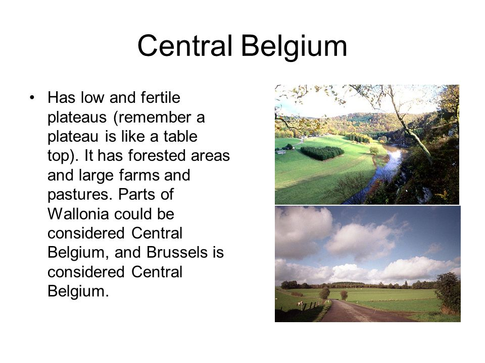 Central Belgium Has low and fertile plateaus (remember a plateau is like a table top).