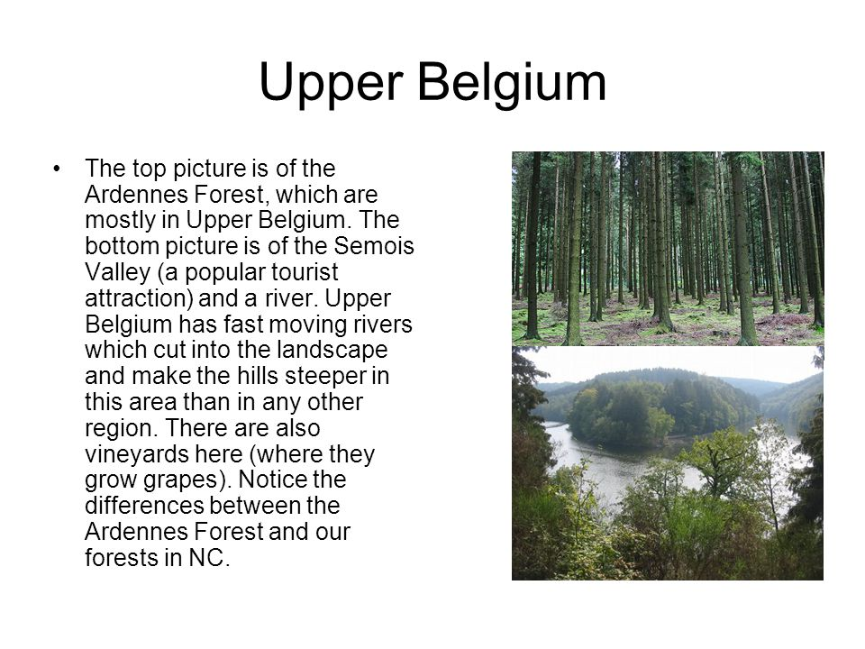 Upper Belgium The top picture is of the Ardennes Forest, which are mostly in Upper Belgium.