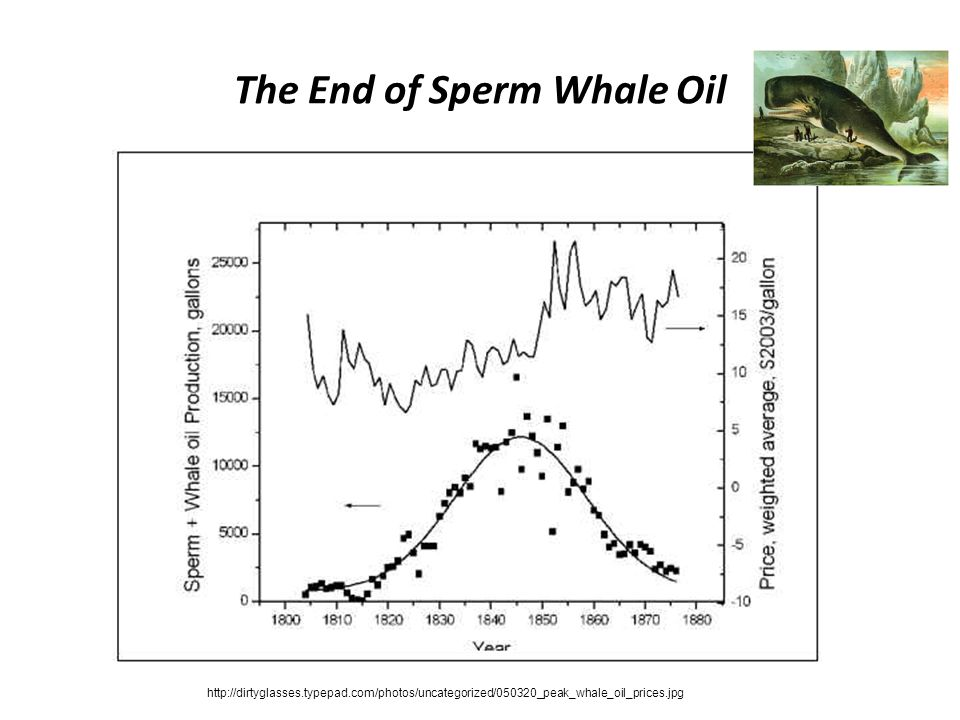 The End of Sperm Whale Oil http://dirtyglasses.typepad.com/photos/uncategorized/050320_peak_whale_oil_prices.jpg