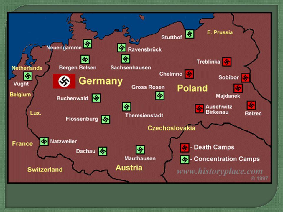 Holocaust Death Toll ~10-13 million Total VictimsKilled Jews6 million Soviet POWs2-3 million Ethnic Poles2 million Romani1 million Disabled250,000 Homosexuals10,000 Jehovah's Witnesses2,500-5,000 Gypsies500,000