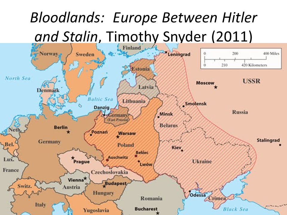 Bloodlands: Europe Between Hitler and Stalin, Timothy Snyder (2011)