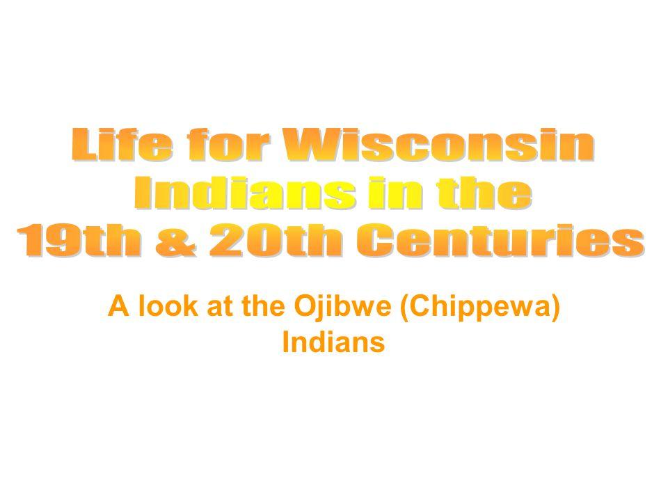 A look at the Ojibwe (Chippewa) Indians