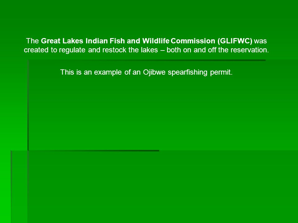 The Great Lakes Indian Fish and Wildlife Commission (GLIFWC) was created to regulate and restock the lakes – both on and off the reservation. This is